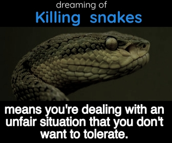 dreaming about killing snakes mean you are facing unfair situation